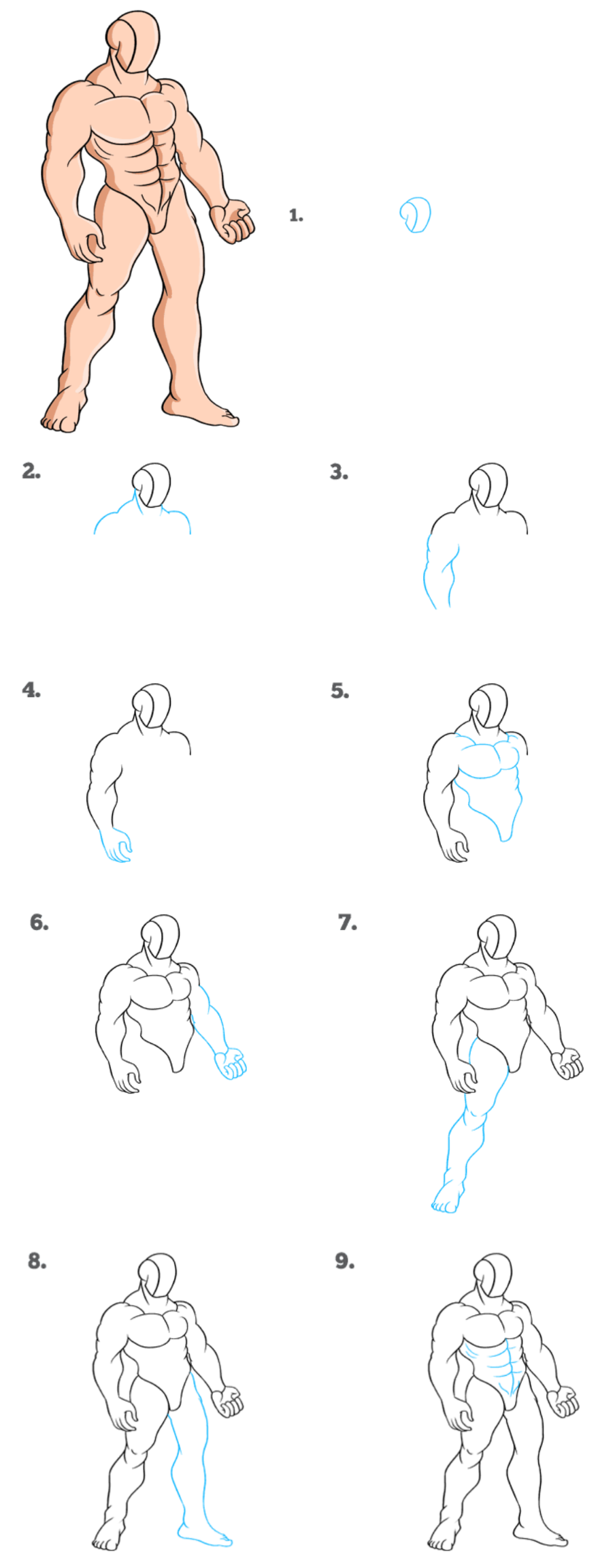 How to draw muscle