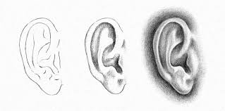 How to draw ear