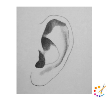 How to Draw a Ear