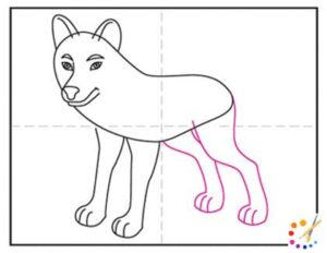 How to draw a wolves