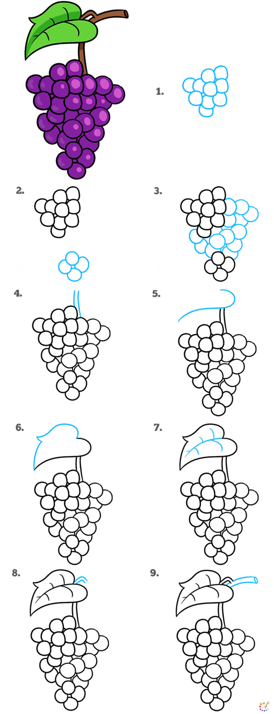 How to draw grapes